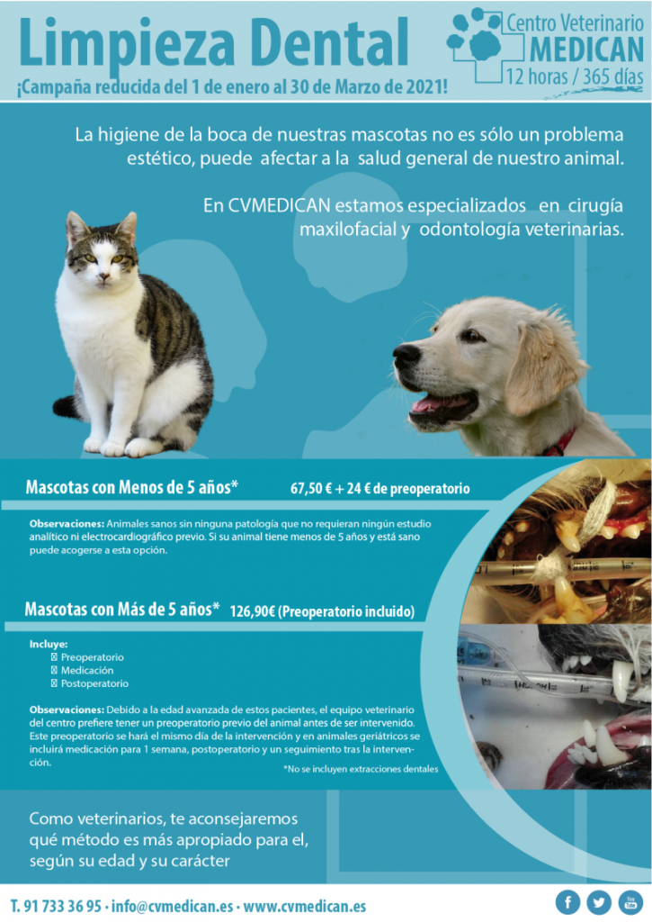 Campaña de limpieza dental: Clínica veterinaria Madrid Medican